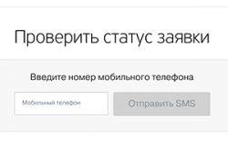 Проверяем статус заявки в банке Тинькофф